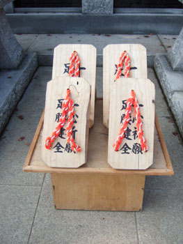 Takao018